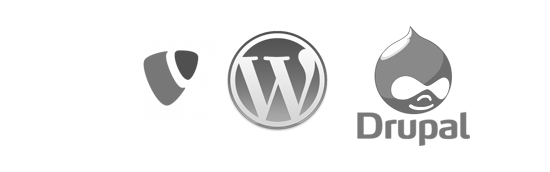 wordpress-drupal-typo31