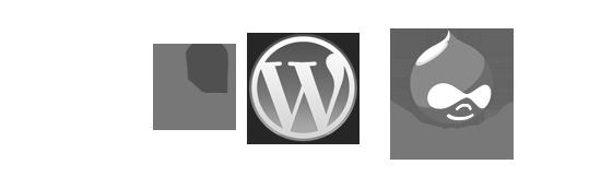 wordpress-drupal-typo31